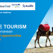 poster tourism webinar with camels on beach