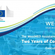 cover page westmed executive summary 2020