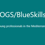 poster.blue.skills.workshop