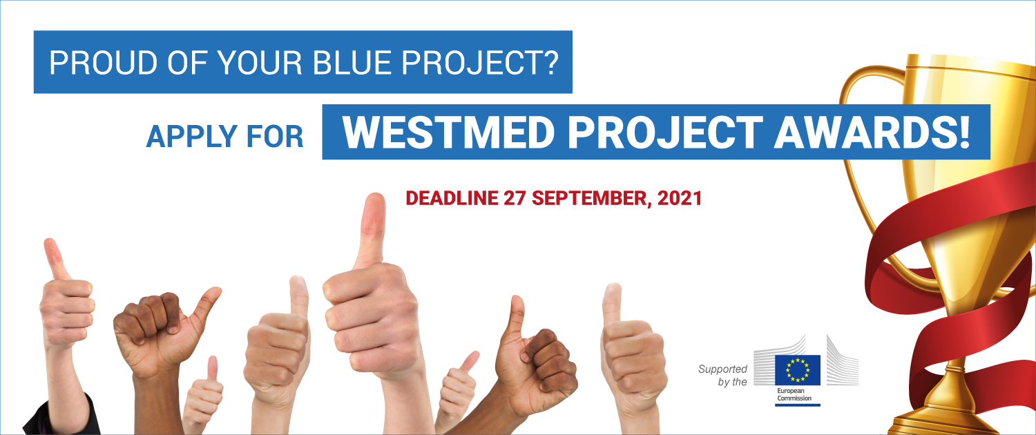 westmed project awards promotion with thumbs up and trophy